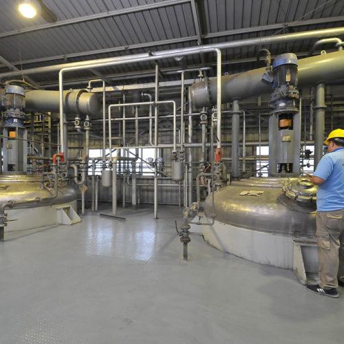 Polymer Plant Reactor